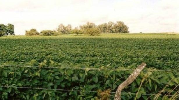 Subirán impuestos de countries y pooles de siembra en la Provincia