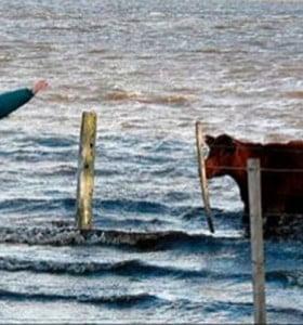 """Provincia """"atenderá caso por caso"""" reclamos del campo por las inundaciones"""