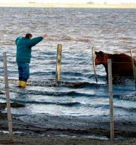 """""""Hay más de 450 mil hectáreas"""" afectadas por las inundaciones"""