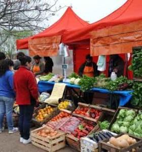 Mercados de Consumo Popular en la Provincia