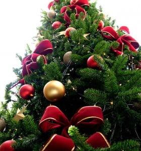 Cuál es el significado del árbol de navidad y sus adornos