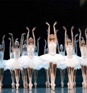 El Lago de los Cisnes se renueva con la Orquesta en vivo