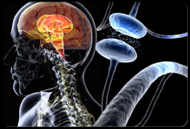 Parkinson: ¿qué está fallando?