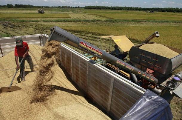 """El Gobierno denunció """"presiones"""" de los exportadores por no liquidar la cosecha"""