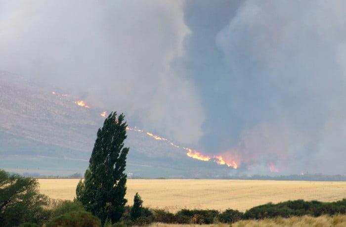 Estiman que esta vez el fuego arrasó 25 mil hectáreas