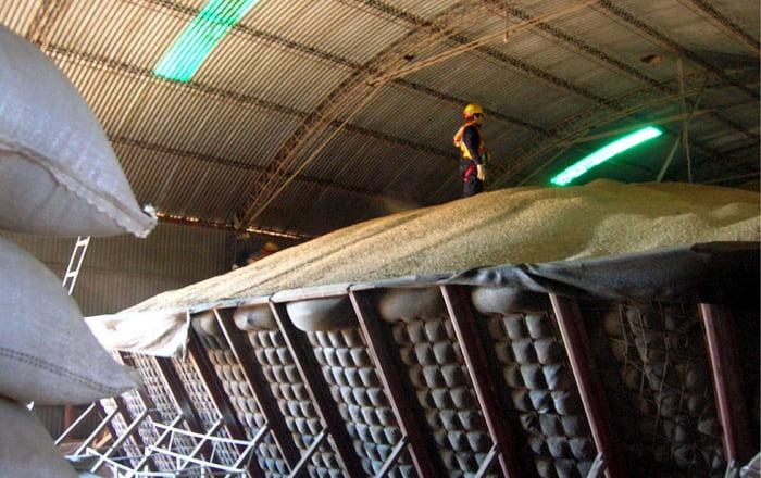 Las cerealeras se comprometieron a ingresar dos mil millones de dólares