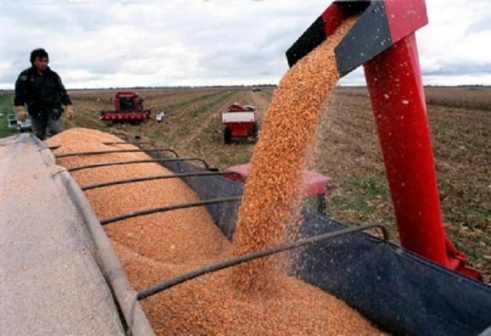 """""""La regulación de granos le sacaría poder a los grupos más poderosos"""""""