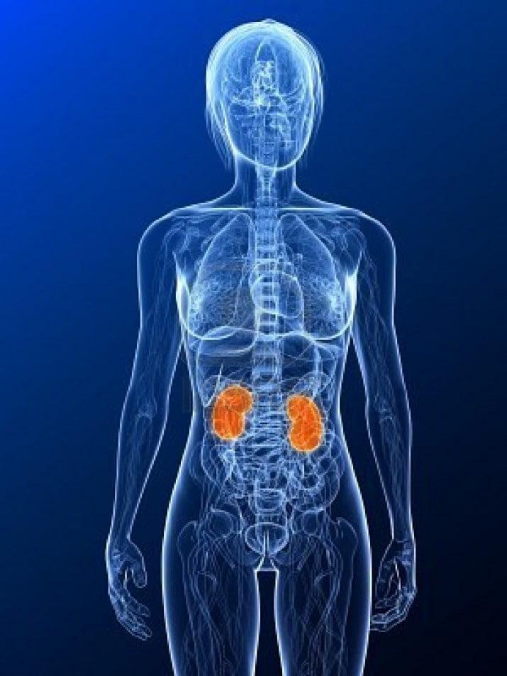Más de un millón de personas desconoce que sufre deterioro renal leve