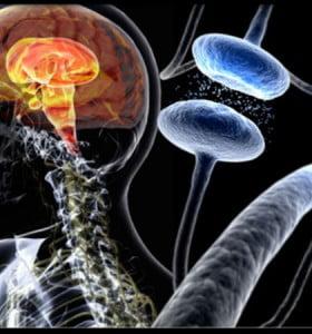 Trastornos de sueño pueden avisar precozmente el inicio del Parkinson