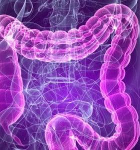 Más de seis millones de argentinos sufren de colon irritable