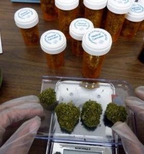Medi(o)cina: Ley de Cannabis Medicinal