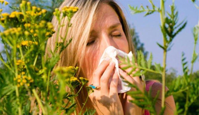 1 de cada tres 3 personas con alergia en Argentina no recibe tratamiento a término