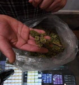 Experiencia inédita: comenzó la venta de marihuana en las farmacias de Uruguay