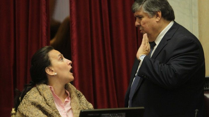 Michetti le cortó la palabra a dos senadores y provocó un escándalo