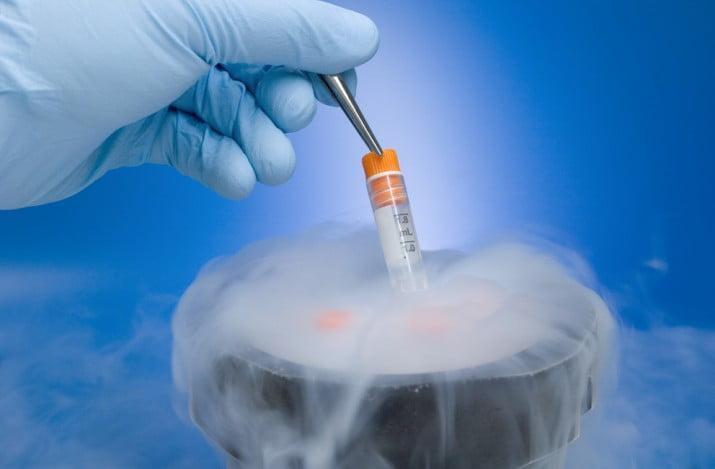 Congelamientos de embriones: ¿cual es la realidad en la Argentina?