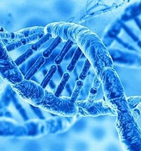 El gen del aprendizaje que se comporta como un virus