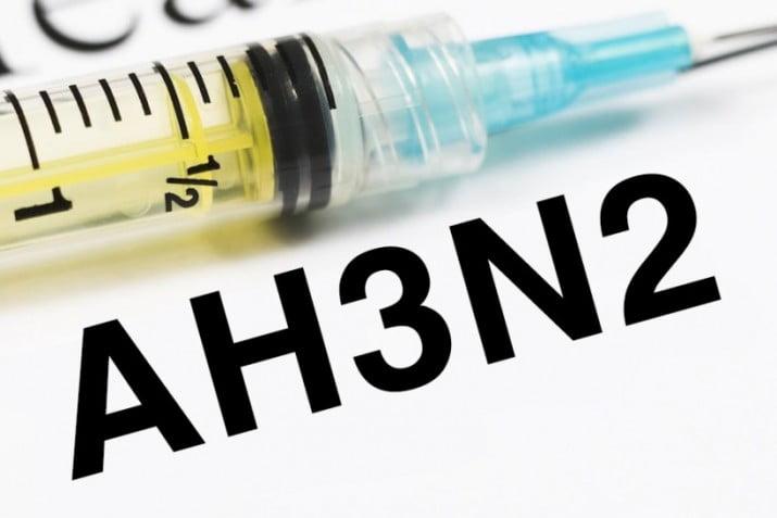 Virus de la gripe recargado: llegó el H3N2