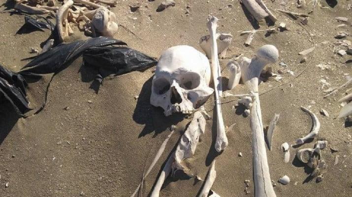 Iban en cuatriciclo y encontraron 20 esqueletos humanos