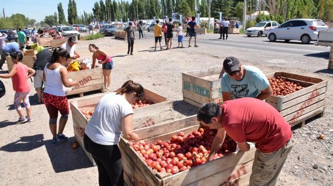 Chacareros regalaron 30 toneladas de manzanas por la crisis