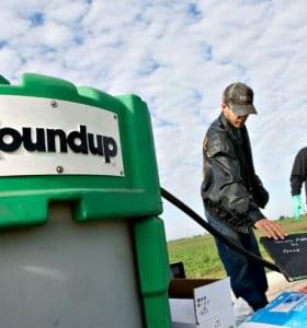 Monsanto en la mira