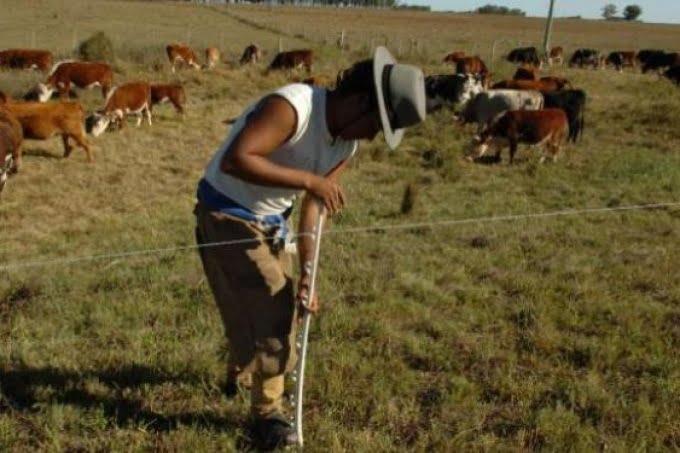 """En el sector agropecuario la mayoría de los trabajadores son """"tercerizados"""""""
