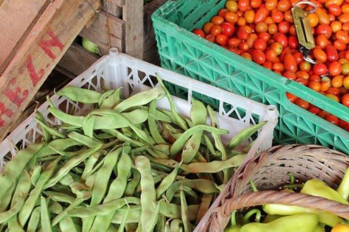 """Productores realizan un """"verdurazo"""" para exigir una ley de acceso a la tierra"""