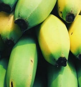 ¿El mundo podría quedarse sin bananas?