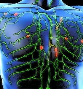 Linfomas: Cuando el sistema inmune se rebela