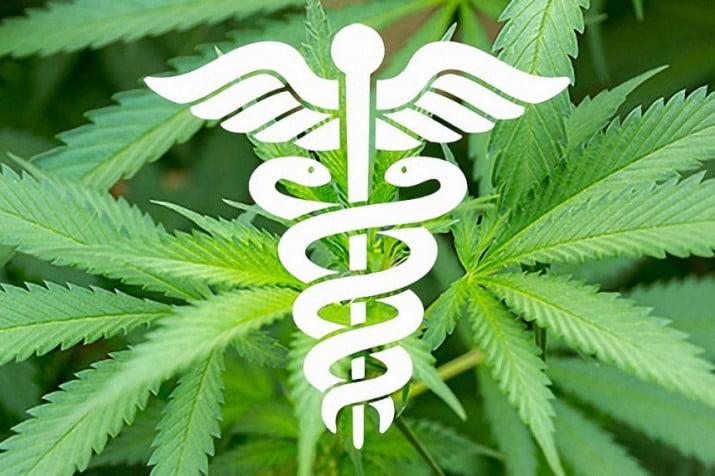 La Madrid plantará cannabis para uso medicinal