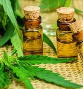 El cannabis medicinal se mete en la agenda del Congreso