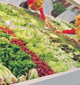 Una dieta para alimentar al mundo