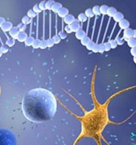 Científicos argentinos identificaron claves para combatir tumores
