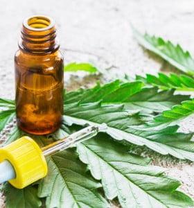 Cannabis medicinal: cómo inscribirse en el registro de pacientes en tratamiento