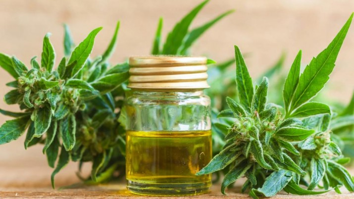 Cannabis medicinal en las farmacias bahienses
