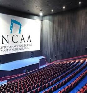 """""""El cine argentino puede desaparecer"""""""