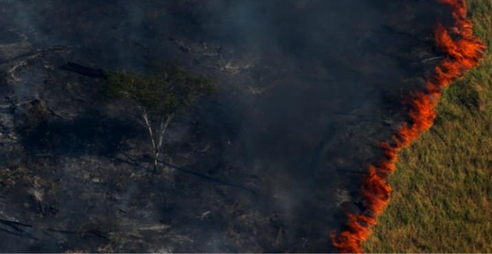 Siete claves para entender qué se quema en el Amazonas