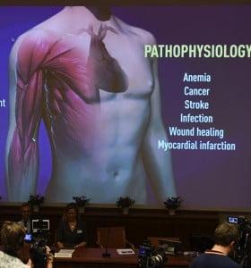 Premio Nobel de Medicina: la importancia de la investigación de los ganadores