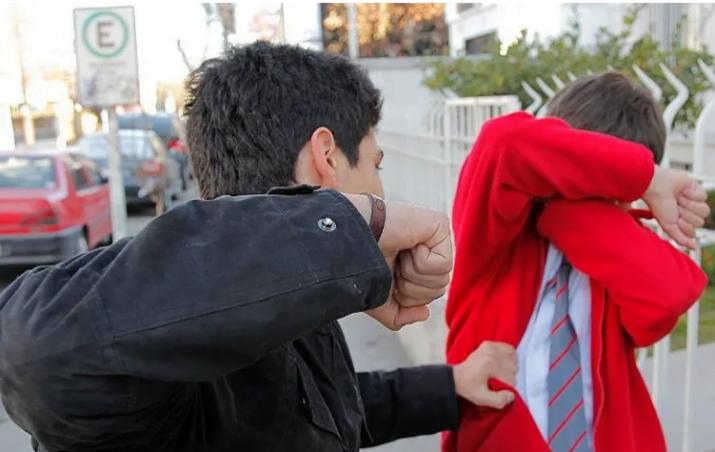 Violencia juvenil: más de 600 varones entre 15 y 29 años mueren por agresiones