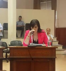 Bahía arde: escandalosa sesión viciada de nulidad en el Concejo Deliberante