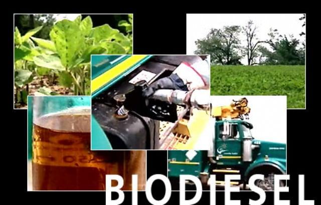 Argentina denunció a la Unión Europea en la OMC por las barreras al biodiesel