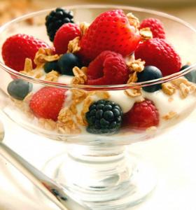 Probióticos: alimentos funcionales