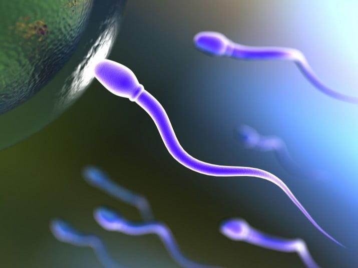 """En el nuevo Código, el inicio de la vida será """"desde la concepción"""""""