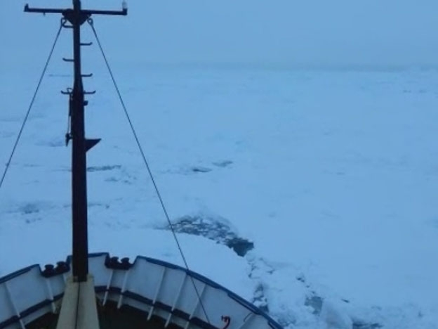 Un barco quedó varado en la Antártida con 74 personas a bordo