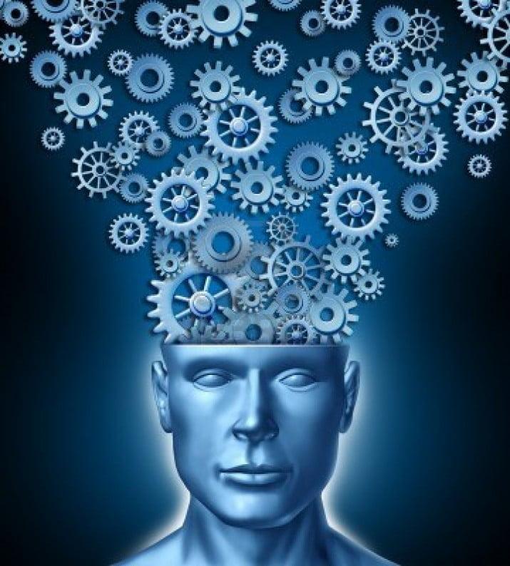 Hallan un gen que relaciona la materia gris con la inteligencia
