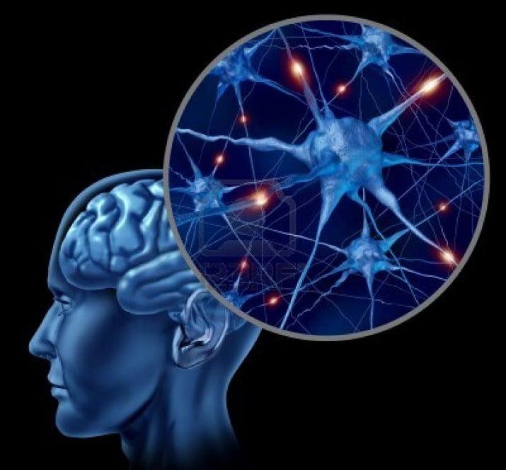 La perdida de memoria a corto plazo se produce aún con neuronas activas