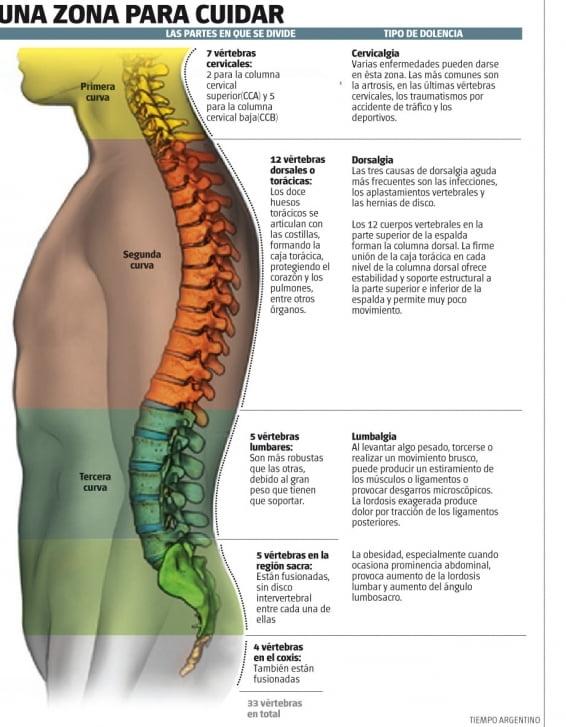 Más sobre Ejercicios para dolor de espalda