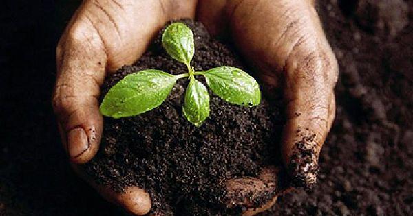 Nuevo ciclo de capacitacion para productores agropecuarios