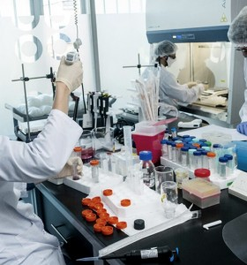 Récord de casos en el país: 10.550 contagios en las últimas 24 horas