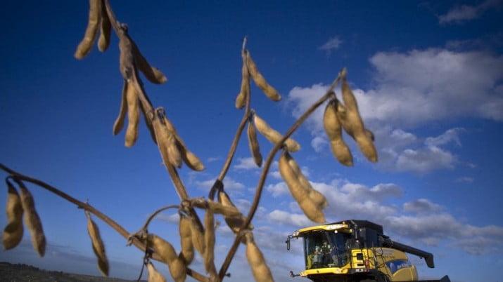 APYME repudia el nuevo lock out  de sectores agropecuarios