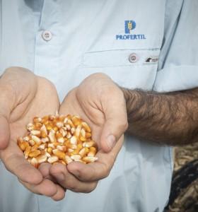 """""""MAIZAR""""  presentó novedades que impulsan el maíz y la sustentabilidad"""